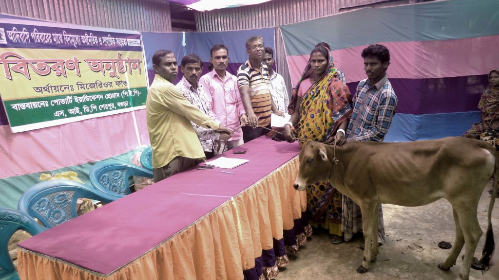 Cow distribution_02