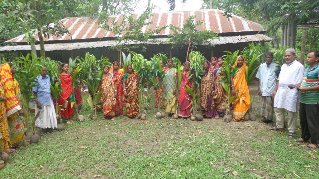 Tree sapling distribution_02